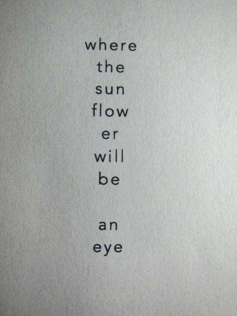 where the sunflower